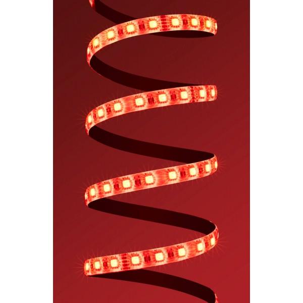 4 in 1 RGB WW LED Streifen Platine Rot