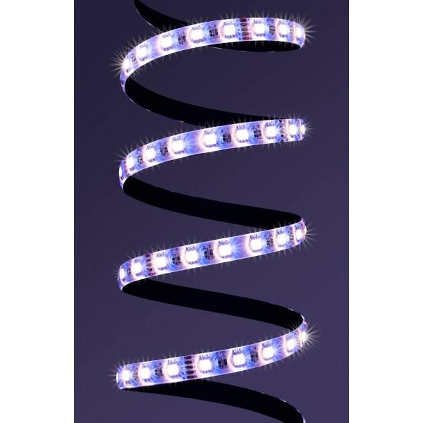 4 in 1 RGB WW LED Streifen Platine Lila