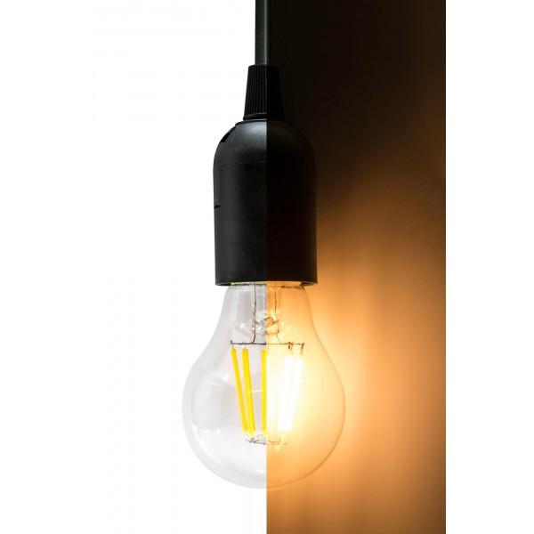 8W LED Filament Lampe E27 A60 mit Fassung geteilt