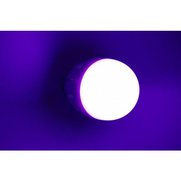 RGB-WW E27 Birne Blau
