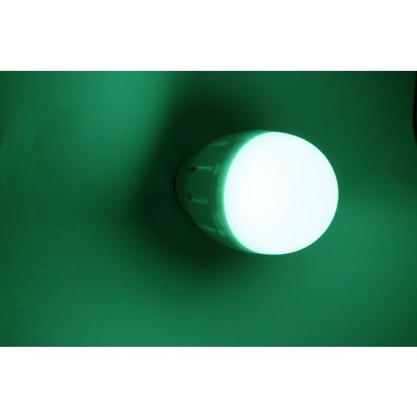 RGB-WW E27 Birne Gr??n