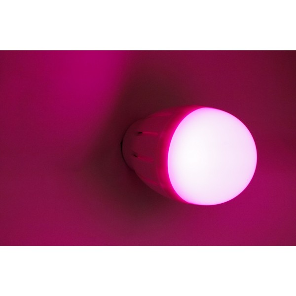 RGB-WW E27 Birne Rot