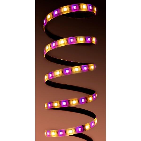 Professional 24V RGBW LED Streifen - violett und warmwei??