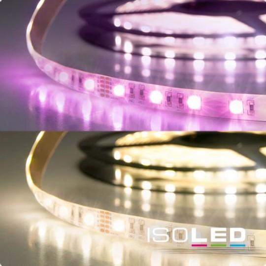 LED SIL RGB+WW Flexband, 24V, 19W, IP20, 4in1 Chip