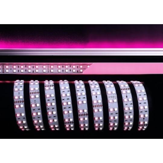 Deko-Light 840061 Lichtschlauch/-band 5050-2x60-24V-RGB+6000K-3m